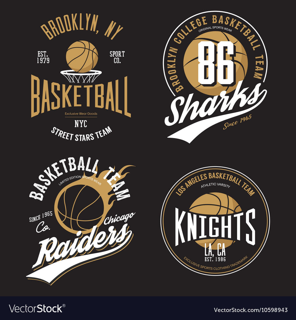 T-shirt design basketball fans for usa new york vector image