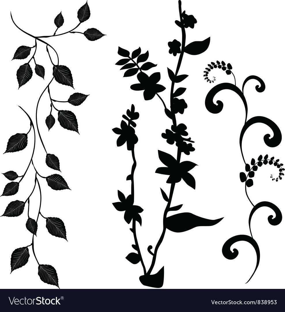 Collection for designers plant set vector image