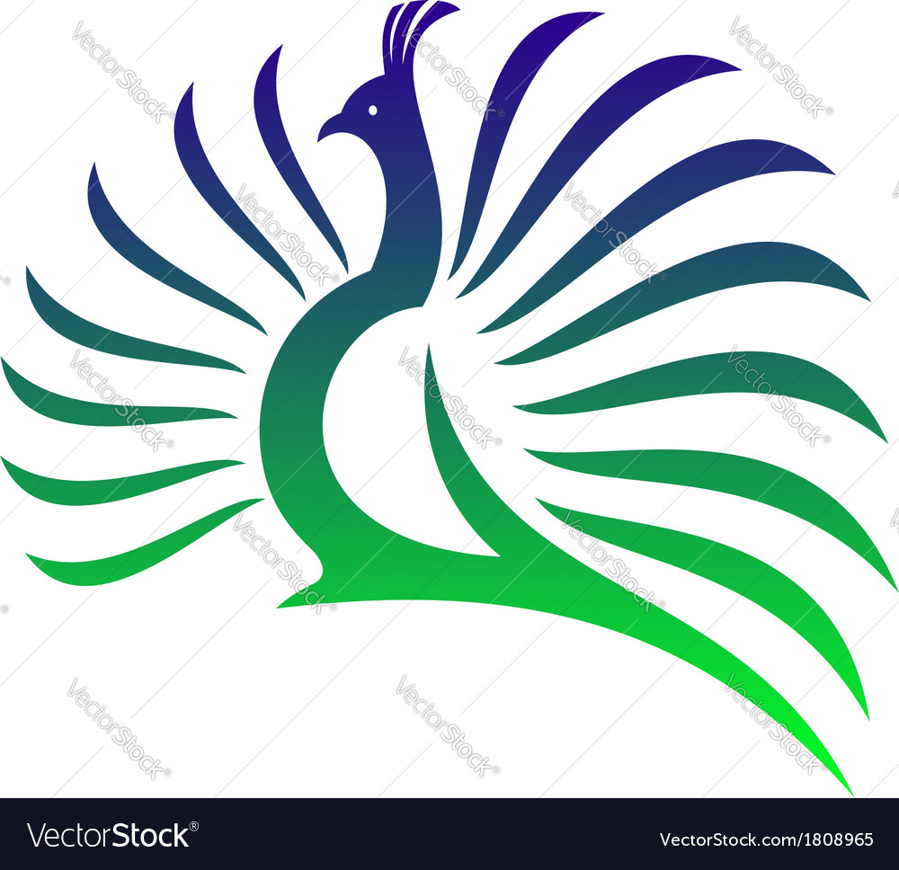 Beautiful stylised peacock vector image