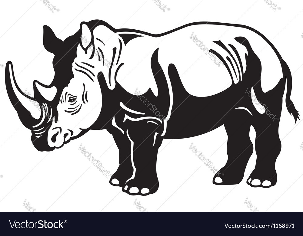 Rhinoceros black white vector image