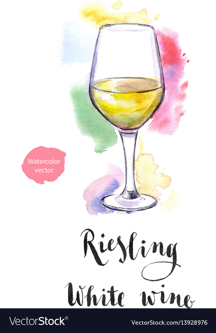 Wineglass of white wine riesling vector image