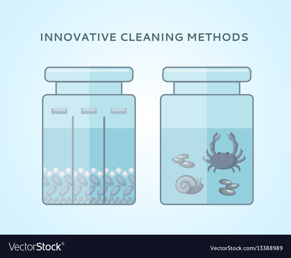 Liquid biological cleaning methods concept vector image
