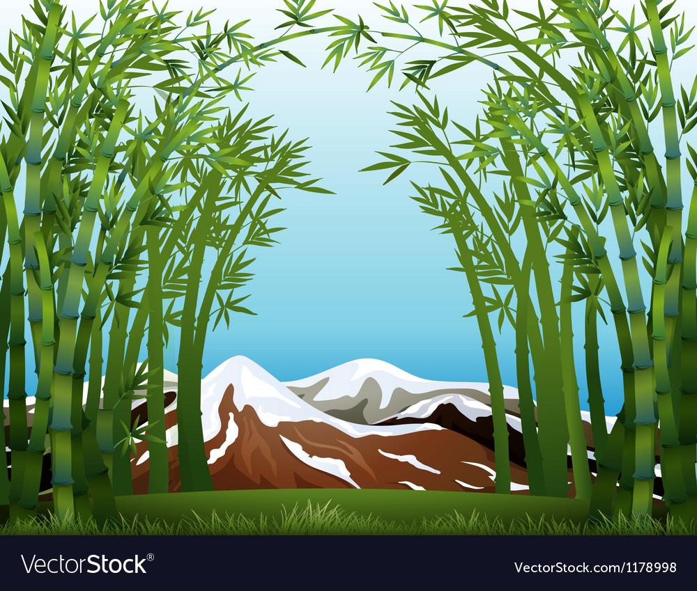 A snowy mountain vector image