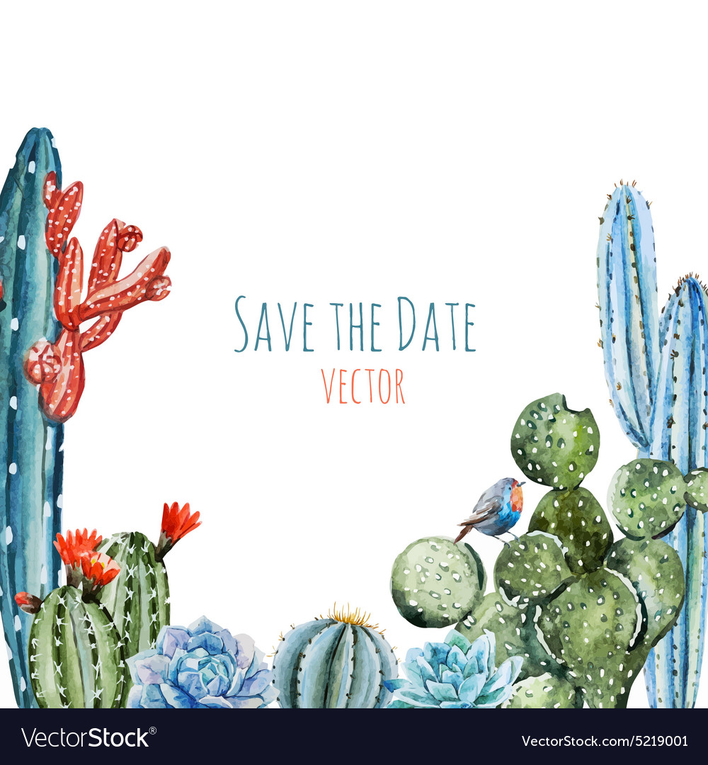Watercolor cactus frame vector image
