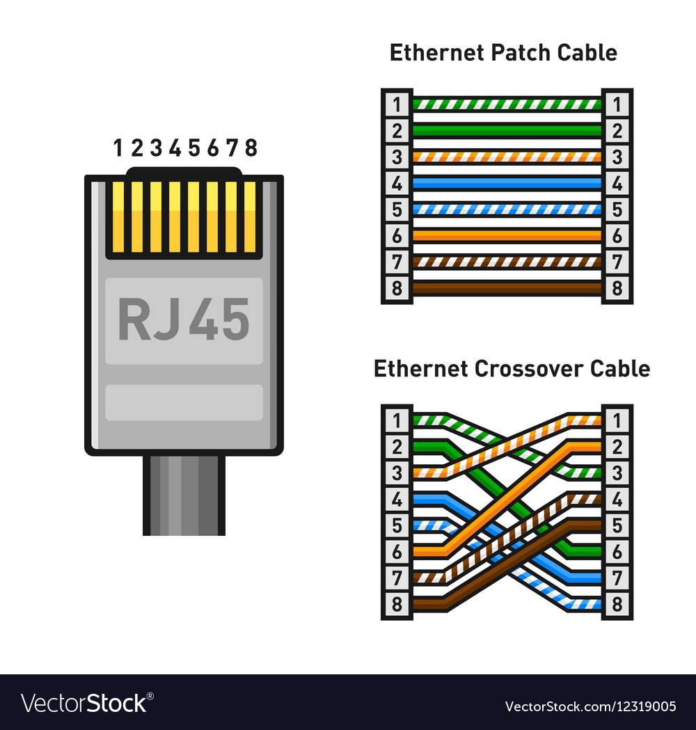 ethernet connector pinout color code straight and vector image. Black Bedroom Furniture Sets. Home Design Ideas