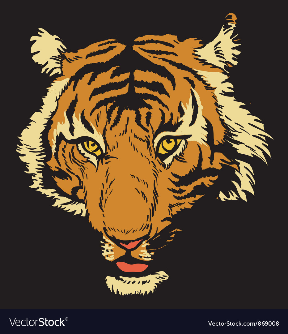 T-shirt design with raging tiger Vector Image
