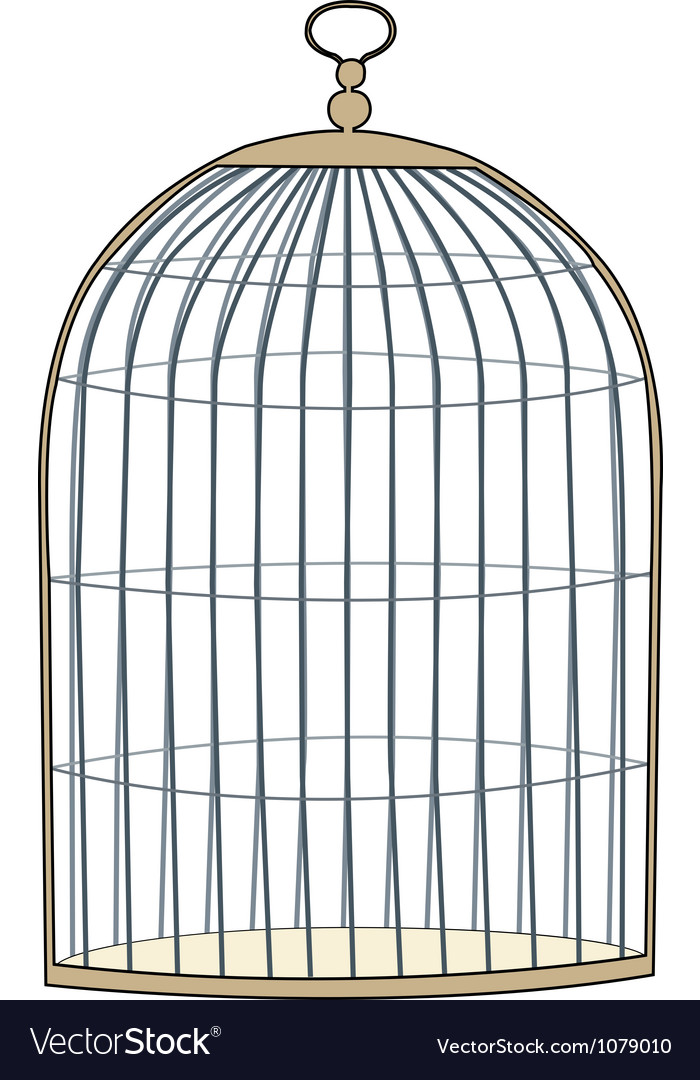 Gold cage vector image