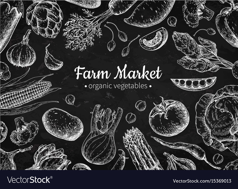 Vegetable hand drawn vintage vector image