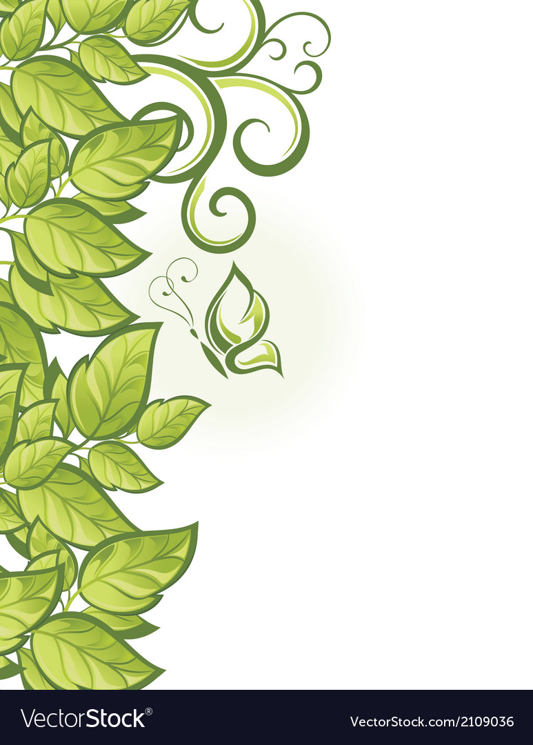 Abstract beautiful green floral background vector image