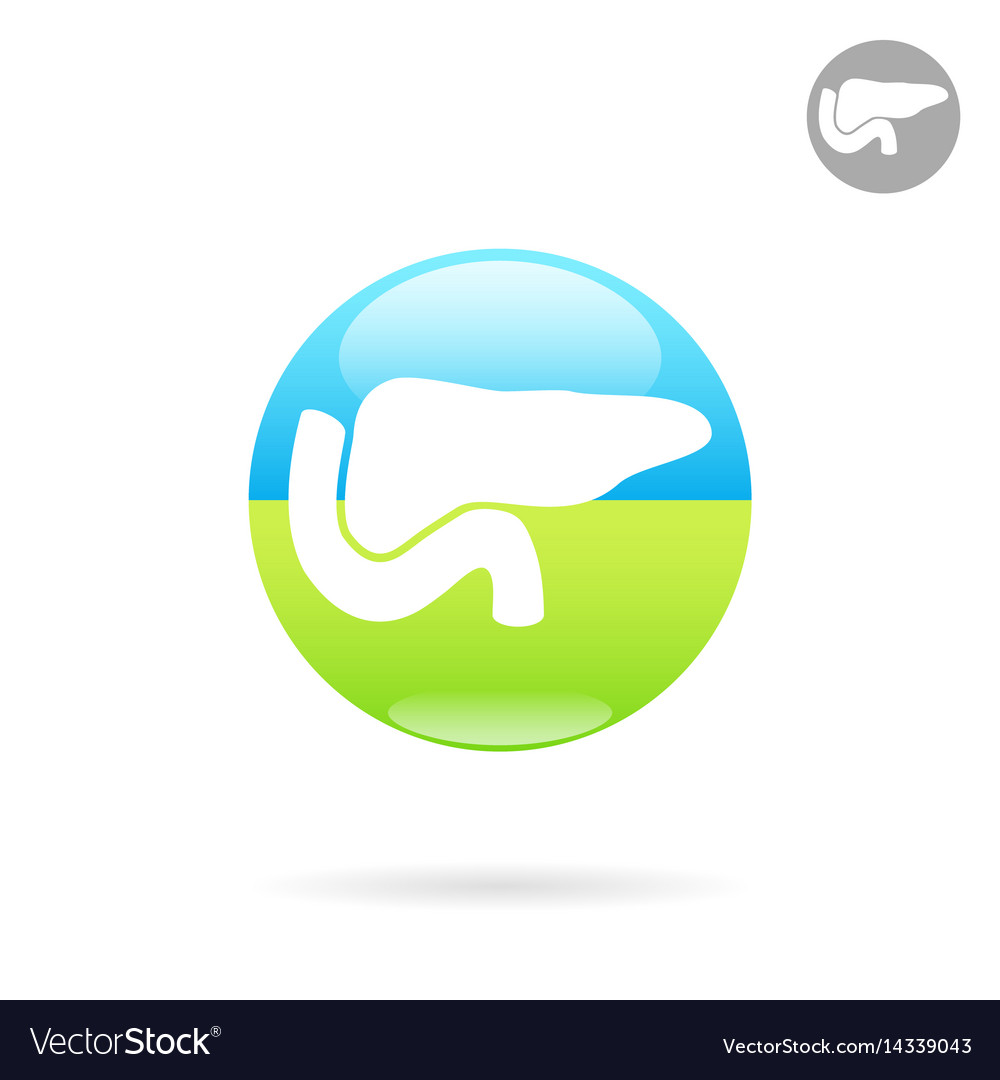 Pancreas medical icon on round plate vector image