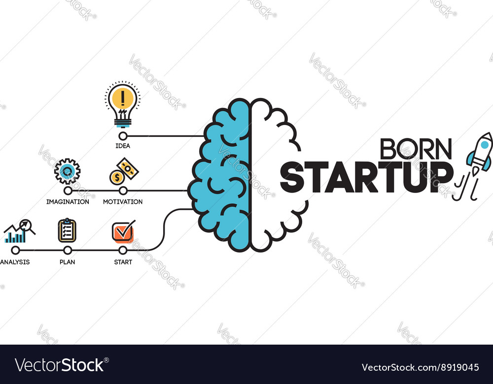 Business project startup process infographic vector image