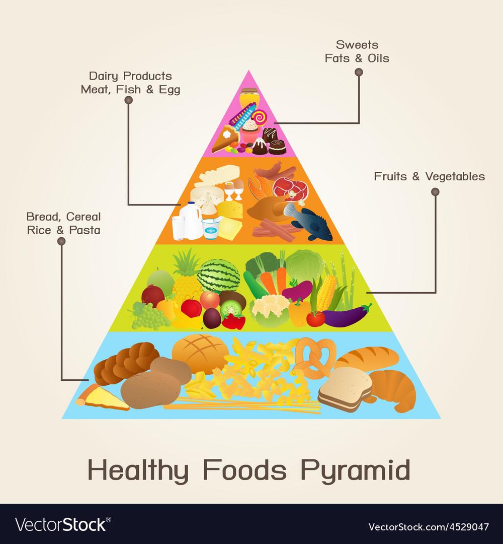 Healthy Foods Pyramid vector image