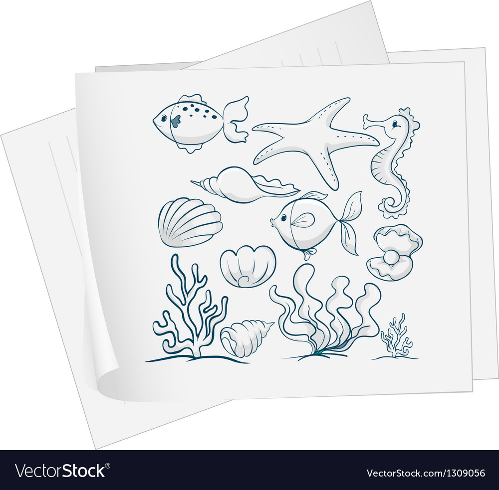 A paper with a drawing of the different underwater vector image