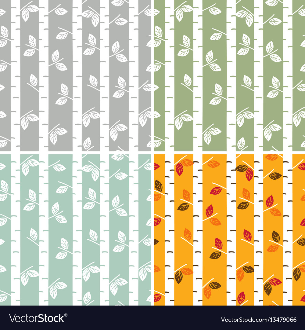 Set of seamless pattern birch trees vector image