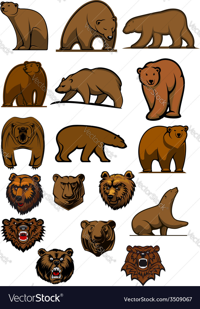 Grizzly or brown bear characters set vector image