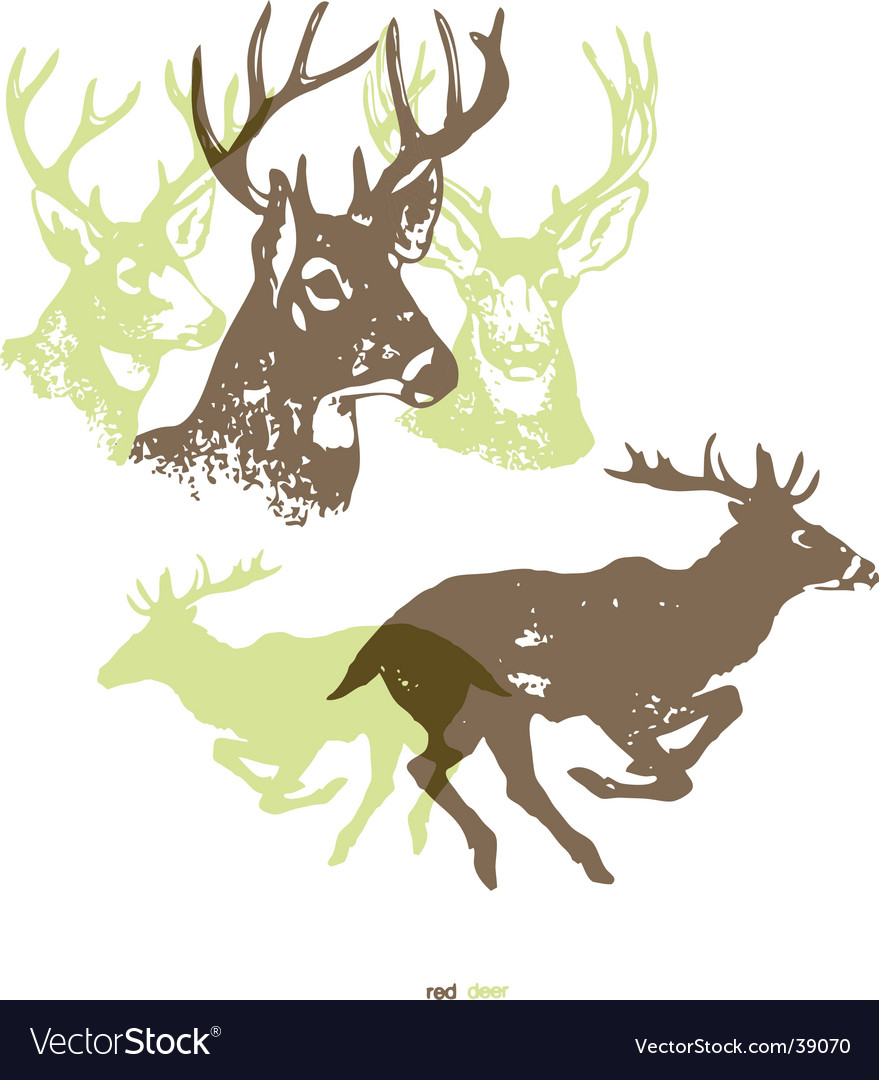 Deer running vector image