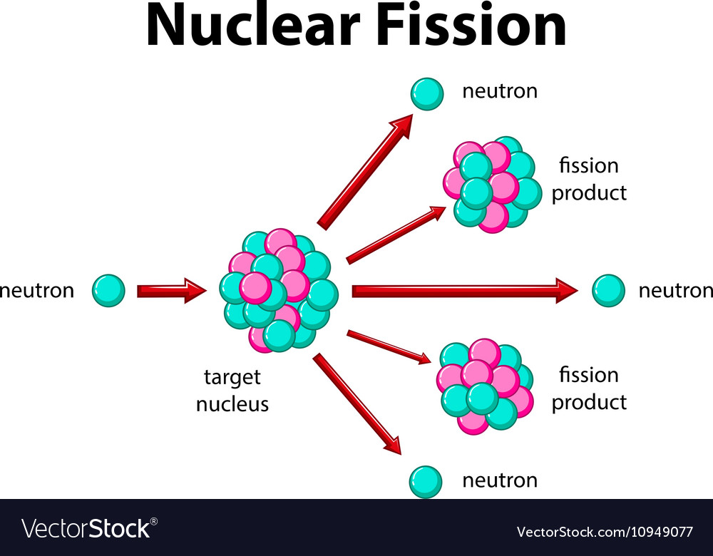 Diagram showing nuclear fission vector image