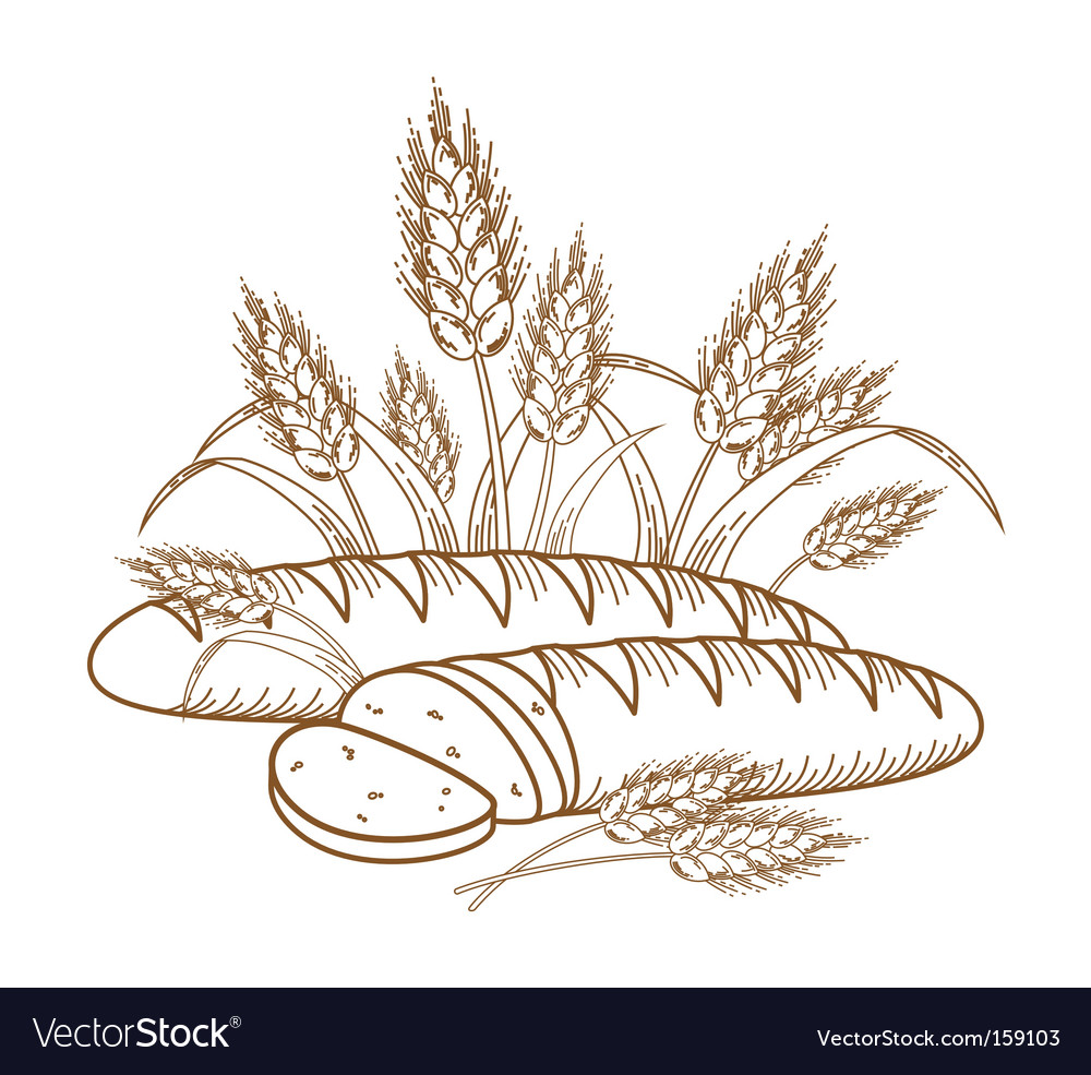 Bread vector image
