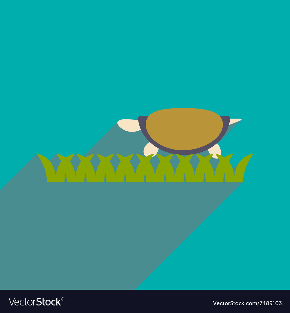 sea turtle icon flat long shadow design