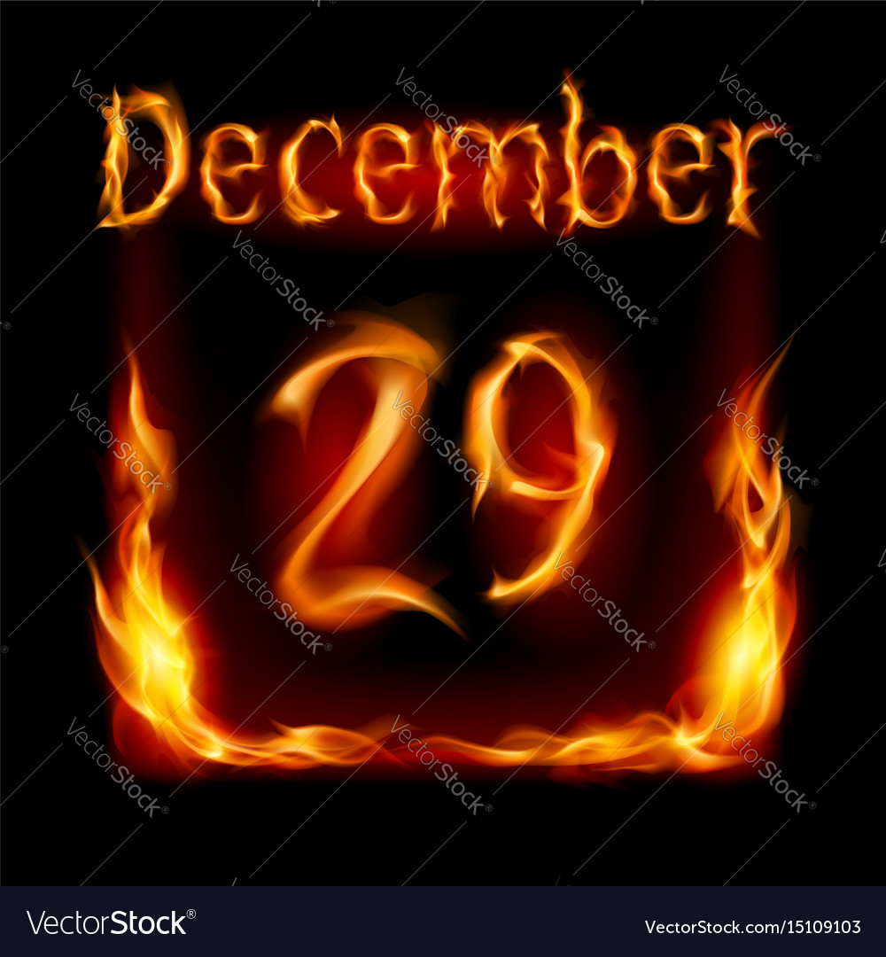 Twenty-ninth december in calendar of fire icon on vector image