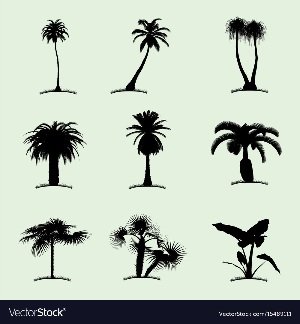 Tree collection flat icon vector image