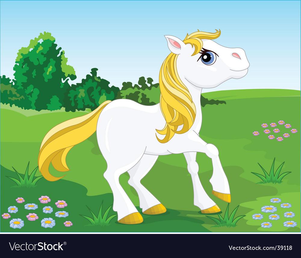 White horse vector image