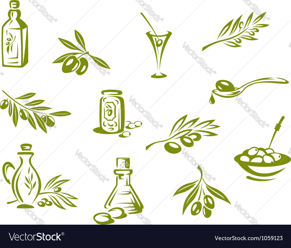 Green olives and organic oil symbols vector image