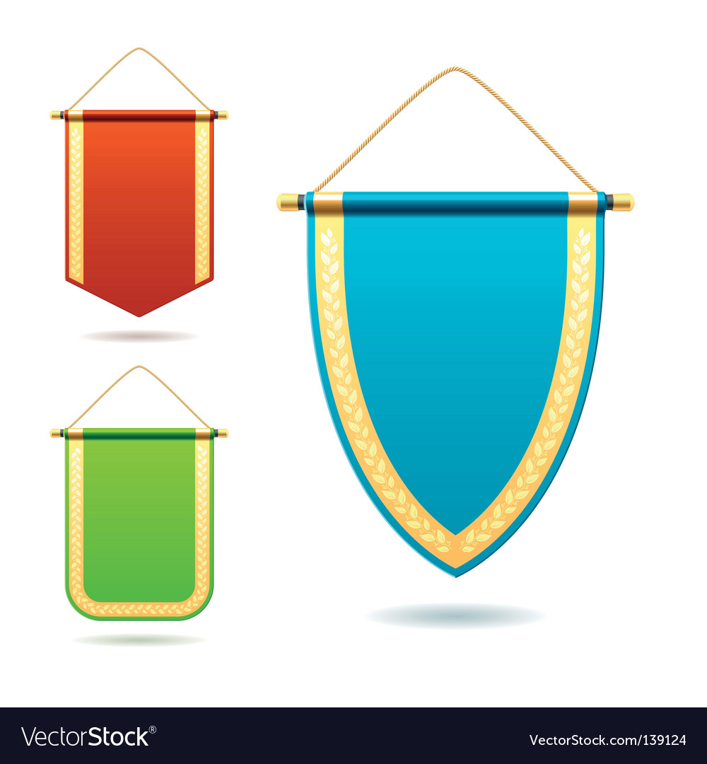 Set of pennants vector image
