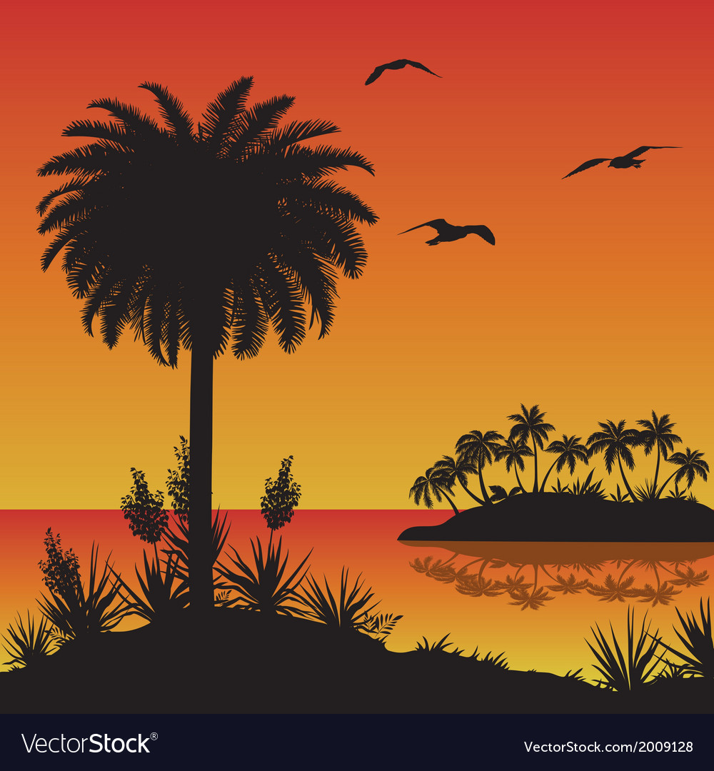 Tropical island palms flowers and birds vector image