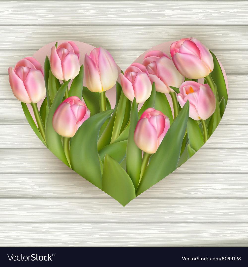 Tulip heart frame bouquet EPS 10 vector image