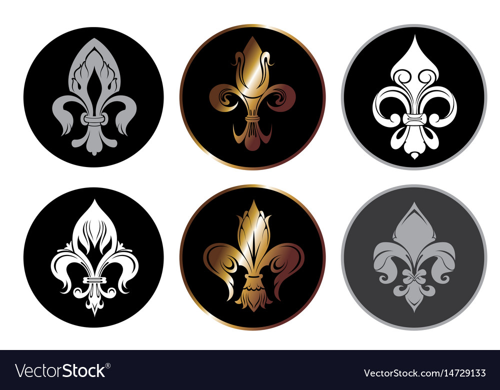 Royal lily collection vector image