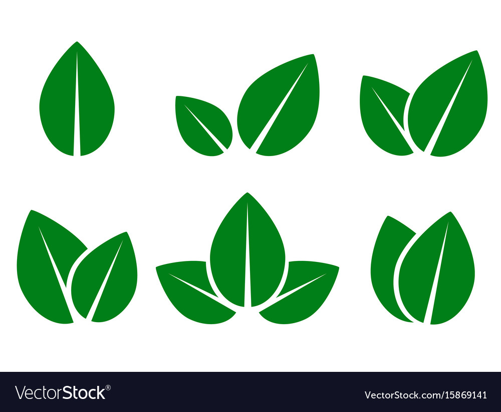 Green leaf eco icons set vector image