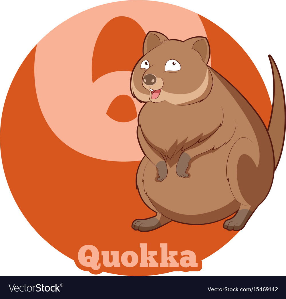 Abc cartoon quokka vector image