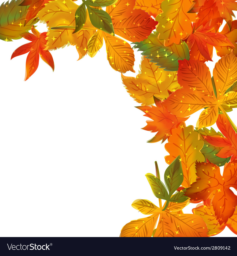 Frame with colored autumn leaves vector image
