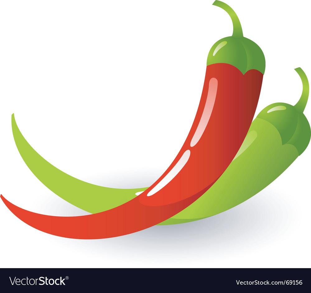 Hot chili vector image