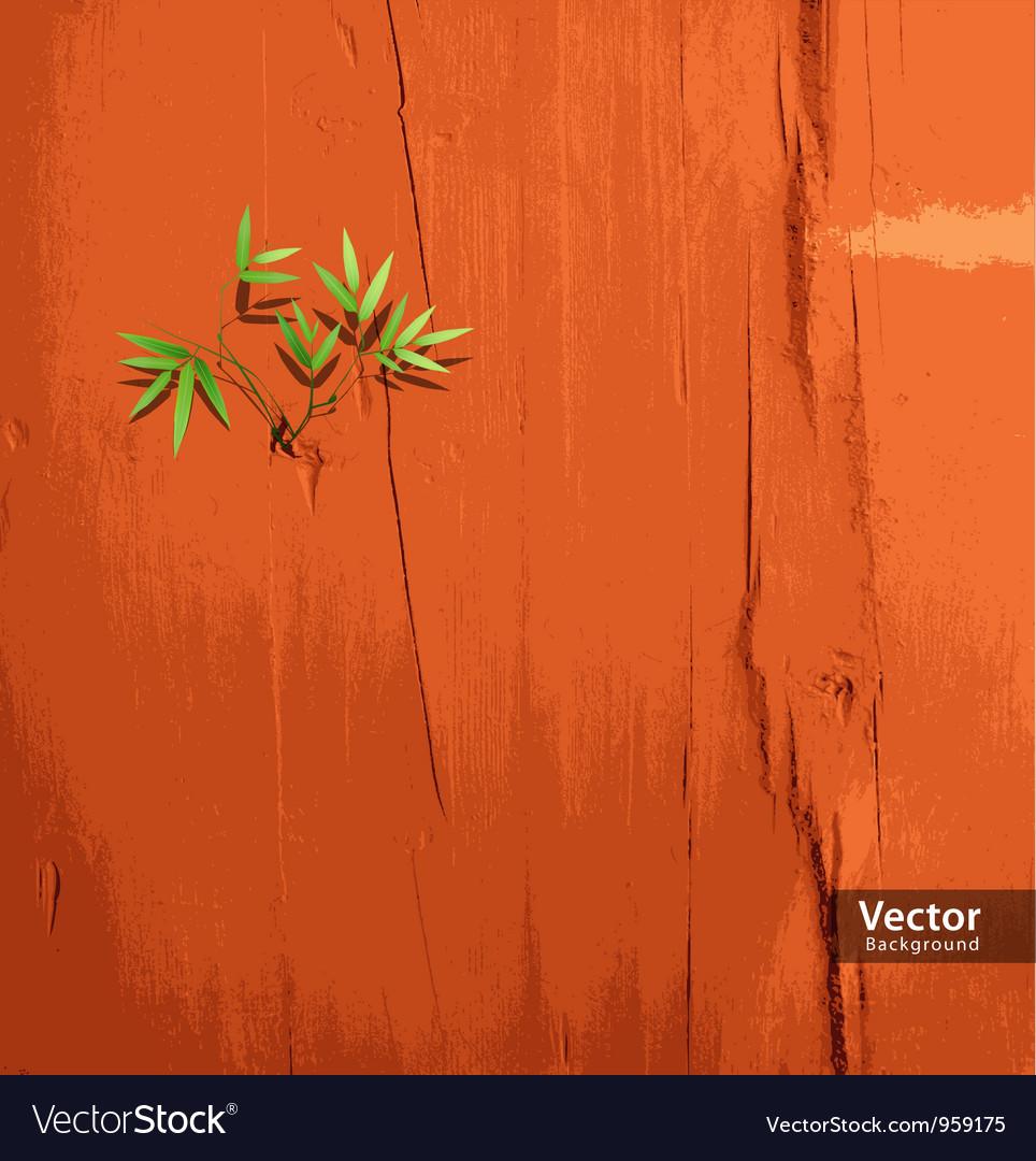 Leaf on orange wallpaper vector image