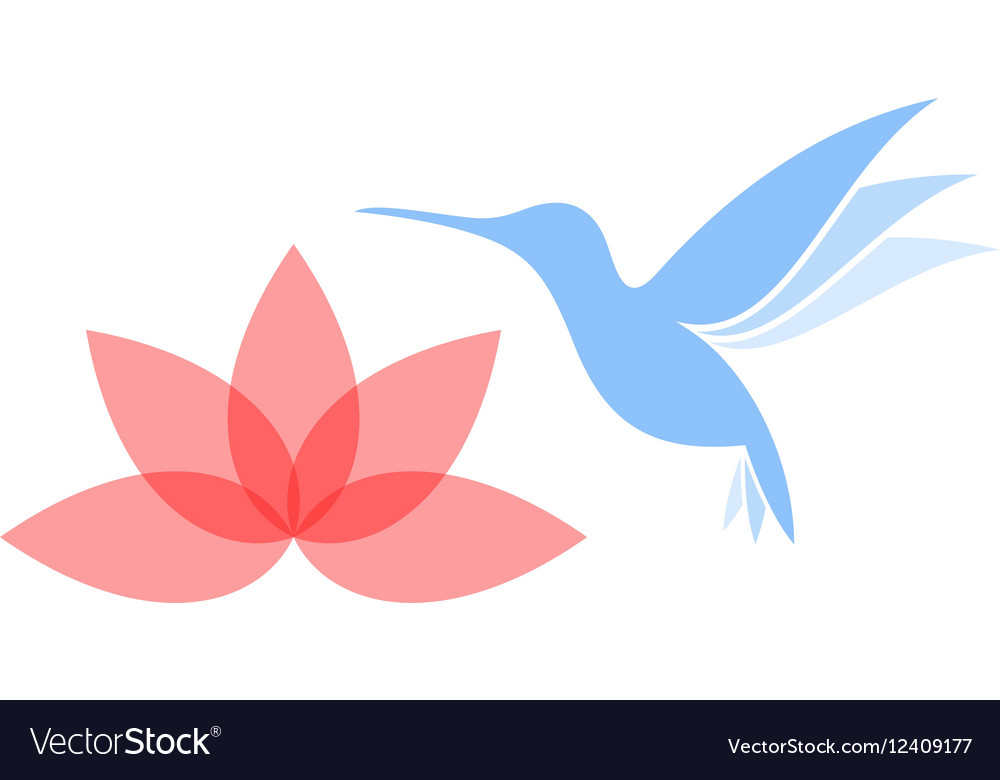Abstract hummingbird with flower vector image
