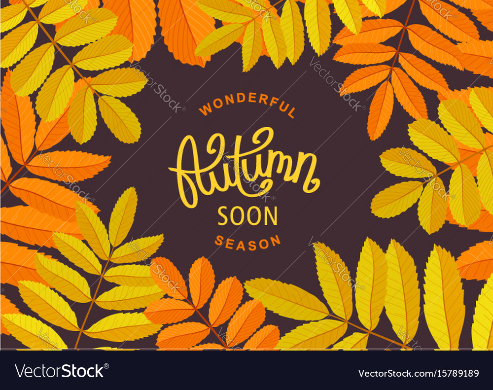 Floral autumn poster vector image