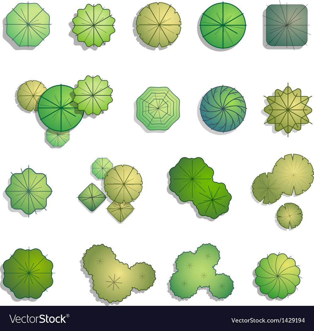 Landscape Illustration Vector Free: Trees Top View For Landscape Design Royalty Free Vector