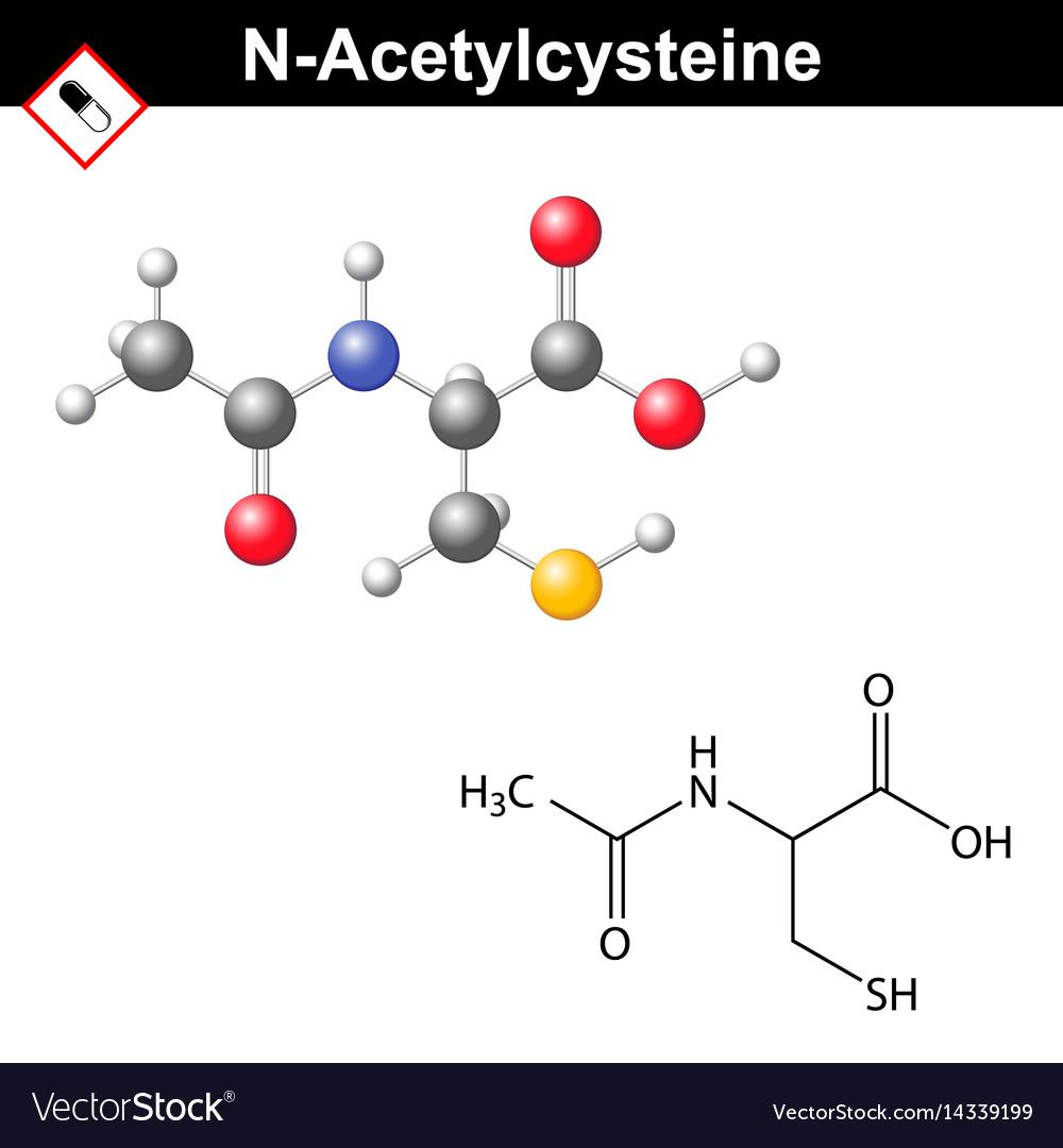 Acetylcysteine mucolytic expectorant detoxifying vector image