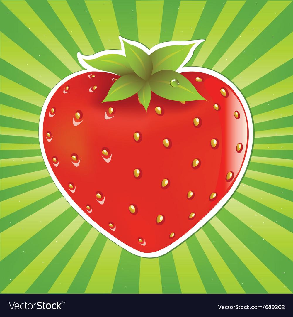 Strawberry and sunburst vector image