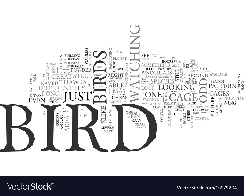 What kind of bird was that text word cloud concept vector image