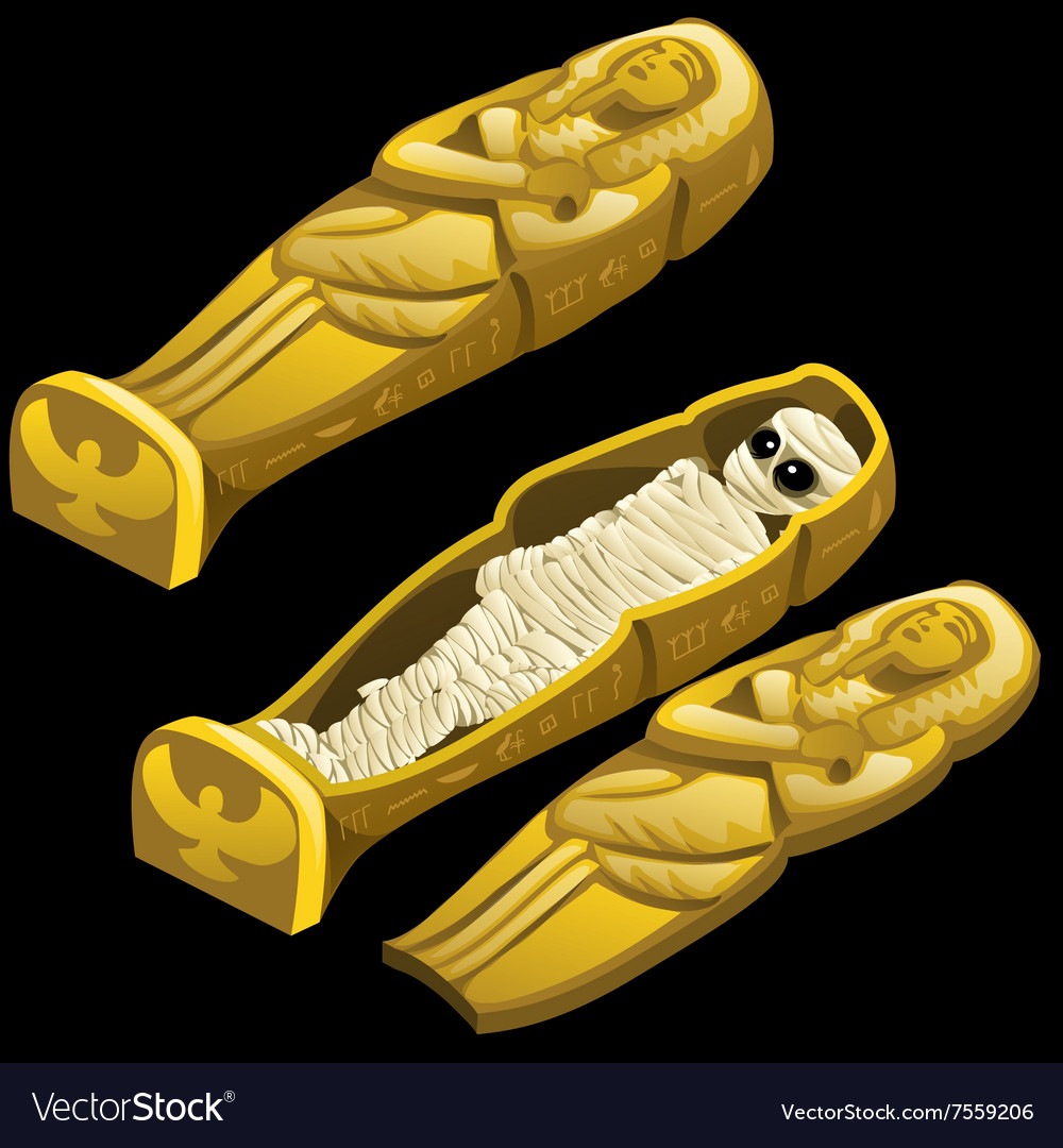 Closed sarcophagus and open one with the mummy vector image
