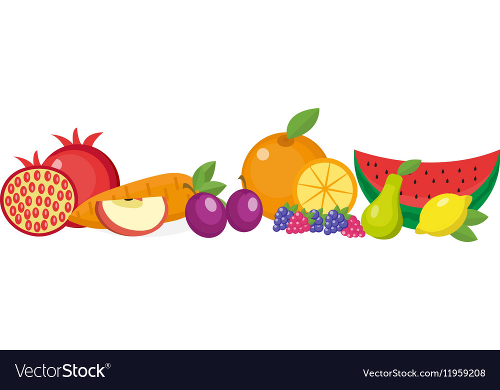 Fruits still life set isolated on white vector image