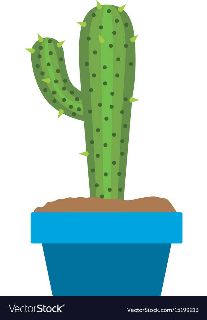 White background with cactus with big branch in vector image