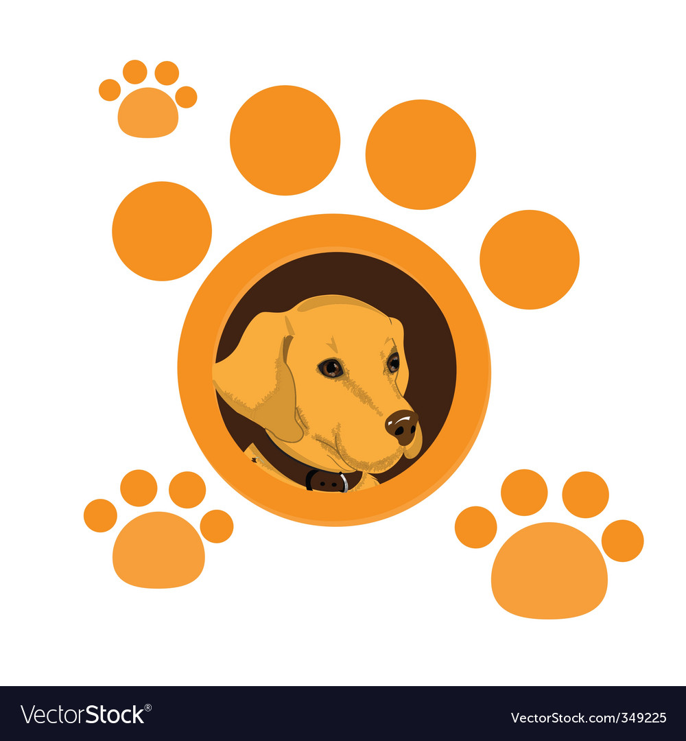 Dog portrait vector image