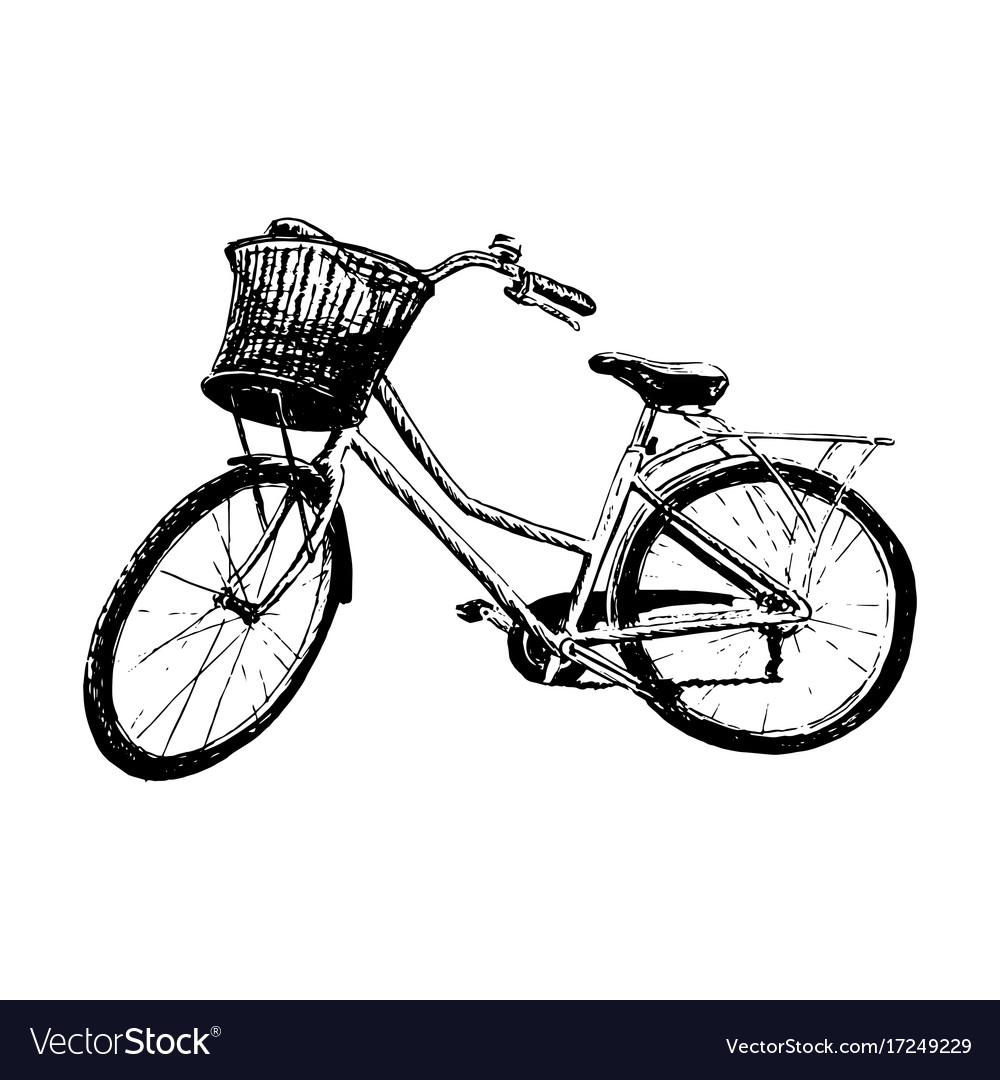 Classic bike silhouette detailed vector image