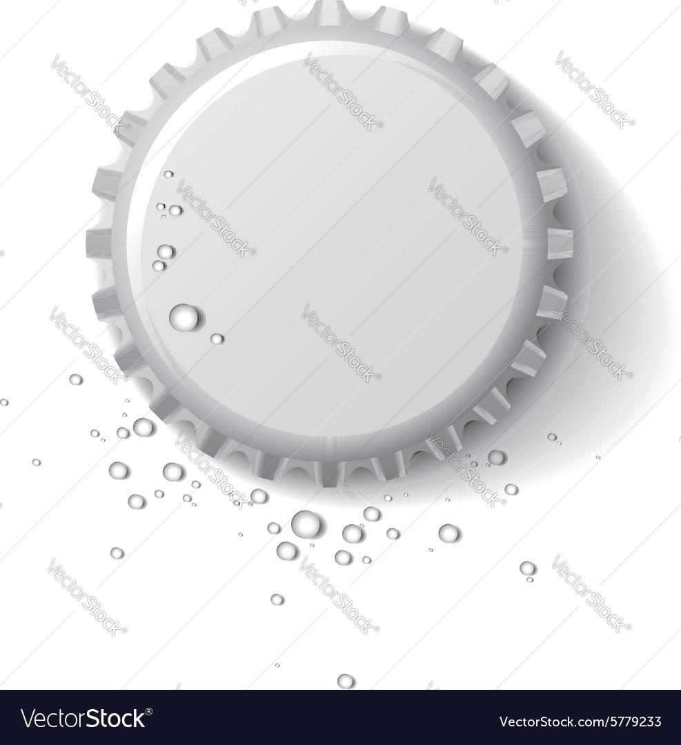 Bottle cap wet vector image