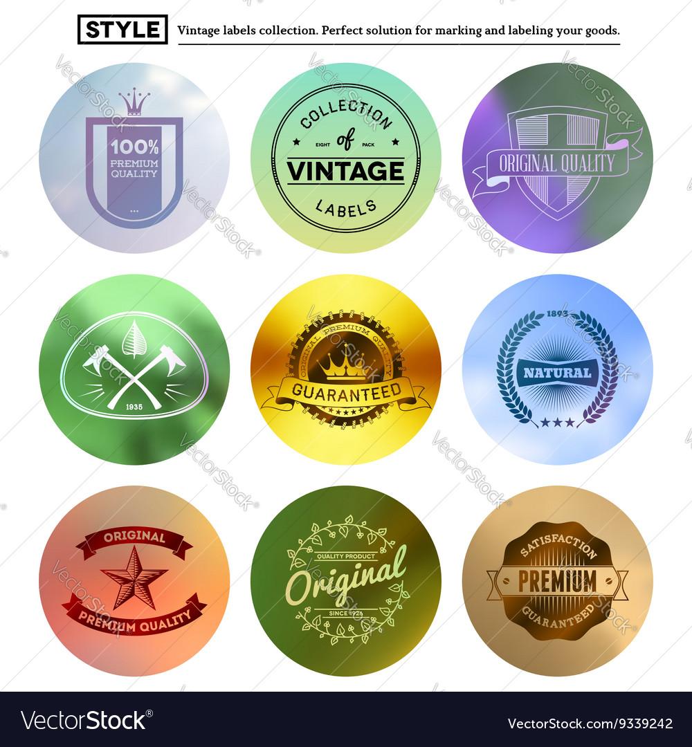 Vintage premium labels set on tile structured vector image