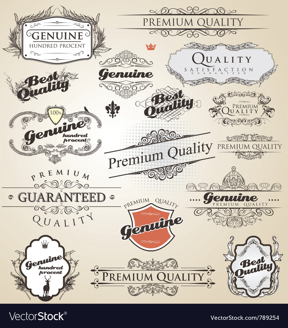 Premium quality and satisfaction guarantee vintage vector image